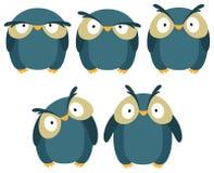 Blue owl Stock Image