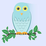 Blue Owl Sitting on a Branch Royalty Free Stock Images