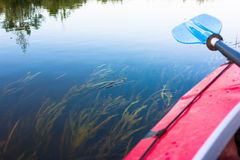 Blue paddle lying on kayak. Kayaking in a river. Summer sunny sport day in outdoor with beautiful nature Stock Photography