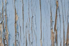 Blue paint cracked on old wooden wall royalty free stock photo