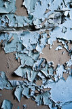 Blue paint peeling off wall. Textured background of light blue paint peeling off gray or grey wall Stock Photos