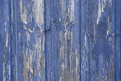 Blue paint peeling. From wooden wall Royalty Free Stock Images