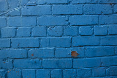 Blue painted brick background Stock Images