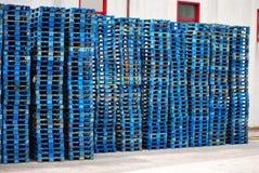 Blue Pallet stack Stock Images