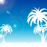Blue palm beach summer Royalty Free Stock Photo