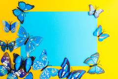Blue paper with butterfly decoration on yellow background with c Royalty Free Stock Photography