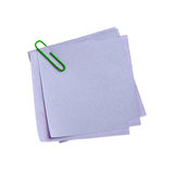 Blue paper note with green clinch Stock Images