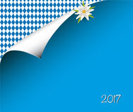 Blue paper sheet with rhomb pattern and Edelweiß, paper pattern for Oktoberfest Stock Photo
