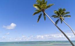 Blue paradise on caribbean island Royalty Free Stock Images