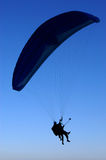 Blue Paraglider Stock Images