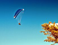 Blue paraglider flying royalty free stock photography