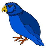 A blue parakeet's profile Stock Photo