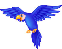 Blue parrot cartoon flying Royalty Free Stock Image