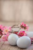 Blue Pastel Colored Easter Eggs and Cherry Blossom Flowers. On white wood background Royalty Free Stock Photos