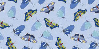 Blue pattern with butterfly and cloud. stock photos