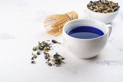 Blue pea butterflly matcha tea. On white background. Copy space royalty free stock image