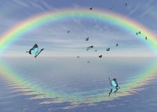 Blue Peacock Butterflies and Rainbow Stock Images