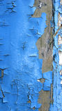 Blue peeling paint. A background of blue peeling paint on wood stock image