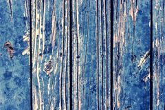 Blue peeling paint on old wooden boards. Rustic texture. Grunge background. Royalty Free Stock Photo