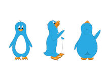 Blue Penguin Stock Photo
