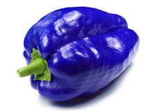Blue pepper Stock Image