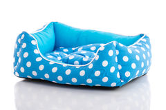 Blue pet bed Stock Images