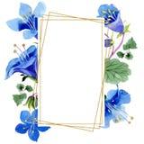 Blue phacelia flower. Green leaf wildflower. Watercolor background illustration set. Frame floral square. Blue phacelia. Floral botanical flower. Green leaf vector illustration