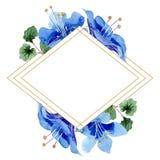 Blue phacelia flower. Green leaf wildflower. Watercolor background illustration set. Frame golden rhombus. Blue phacelia. Floral botanical flower. Green leaf vector illustration