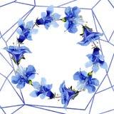 Blue phacelia flower. Watercolor background illustration set. Frame floral wreath. Geometric crystal stone polyhedron. Blue phacelia. Floral botanical flower stock illustration