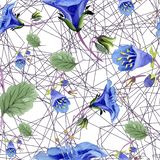 Blue phacelia flower. Watercolor illustration set. Seamless background pattern. Fabric wallpaper print texture. Blue phacelia. Floral botanical flower. Green royalty free illustration