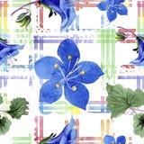 Blue phacelia flower. Watercolor illustration set. Seamless background pattern. Fabric wallpaper print texture. Blue phacelia. Floral botanical flower. Green vector illustration