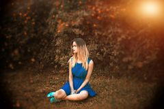 Blue, Photograph, Nature, Sitting stock photos