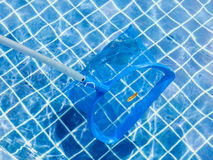 The blue picker and leaves on pool surface for cleaning and main Royalty Free Stock Photos