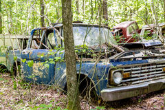 Free Blue Pickup Wrecked In Woods Royalty Free Stock Images - 66988659