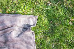Blue picnic blanket on the grass. Field Stock Image