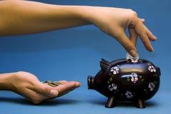 Blue Piggy Royalty Free Stock Photo