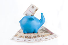 Blue piggy bank with bills hundred rubles Royalty Free Stock Photo