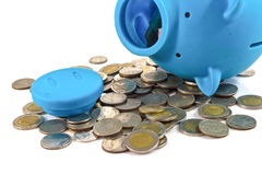 Blue piggy bank with coins Royalty Free Stock Photography