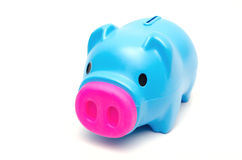 Blue piggy bank or money box . Royalty Free Stock Photos