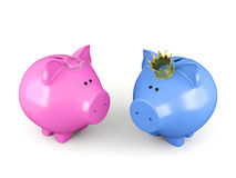 Blue piggy bank and pink piggy bank wearing a crown standing isolated on white background Royalty Free Stock Photo