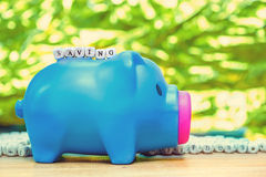 Blue piggy bank with Saving message on green background Royalty Free Stock Images