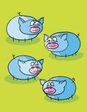 Blue pigs cartoon Stock Photography