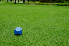 Blue pin on teeing ground Stock Photography