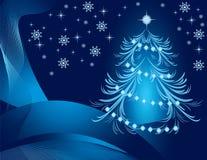 Blue pine Royalty Free Stock Photos