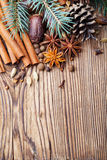 Blue pine tree branch Christmas winter spices Royalty Free Stock Photo