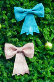 Blue and pink bow on christmas tree Royalty Free Stock Image