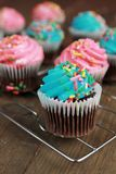 Blue and  pink cupcakes Stock Images
