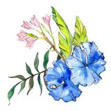 Blue and pink exotic tropical hawaiian flowers. Watercolor background set. Isolated flower illustration element. Blue and pink exotic tropical hawaiian floral stock illustration