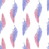 Blue and pink  feathers Stock Image