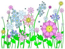 Blue and pink flowers, glade, vector. Flowers arranged in a row, differing in shape, color and structure, in blue and pink tones, vector royalty free illustration